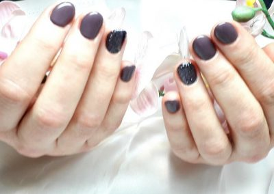 Refill mit Fullcover Smoky Plum und Black Diamond (Gel)